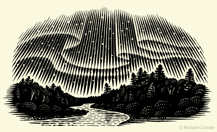 Woodcut-style illustration of aurora borealis (northern lights) in the night sky above forest trees.