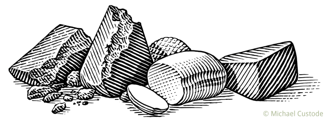 Woodcut-style illustration of five different kinds of cheese.