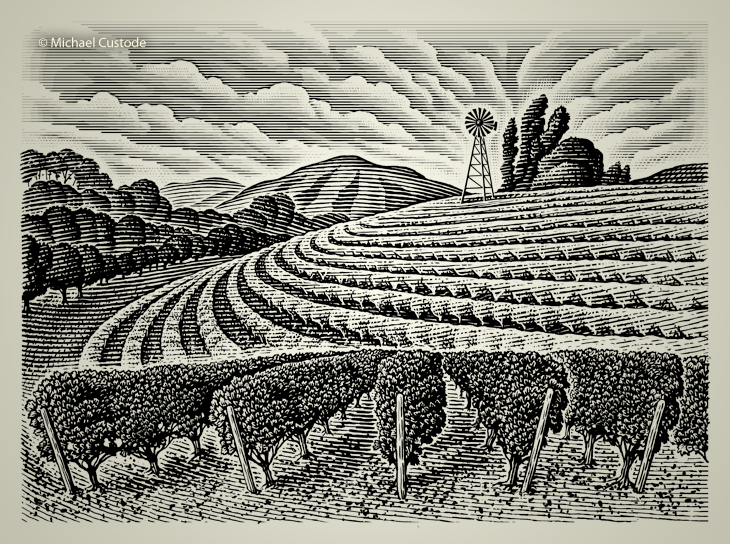 Illustration of vineyard on a hill with a windmill in the background.