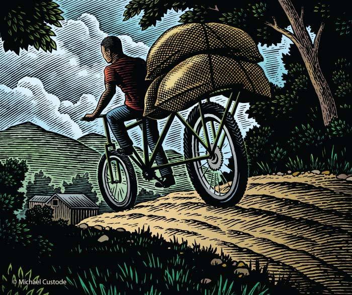 Illustration of a man on a specially-designed coffee bike transporting three large bags of beans on a hilly road.